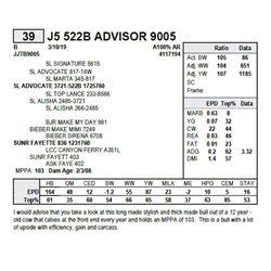 J5 522B ADVISOR 9005