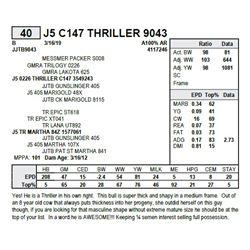 J5 C147 THRILLER 9043