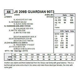 J5 209B GUARDIAN 9073