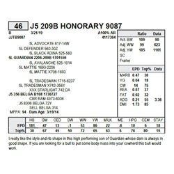 J5 209B HONORARY 9087