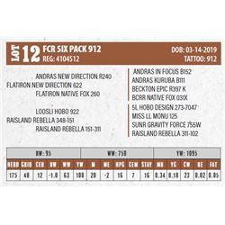 Lot - 12 - FCR SIX PACK 912