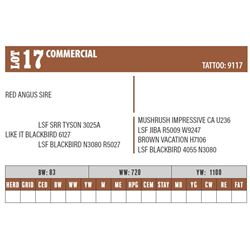 Lot - 17 - COMMERCIAL
