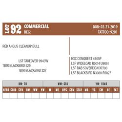 Lot - 92 - COMMERCIAL