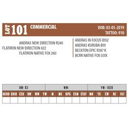 Lot - 101 - COMMERCIAL