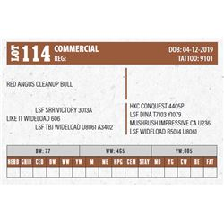 Lot - 114 - COMMERCIAL