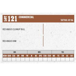 Lot - 121 - COMMERCIAL