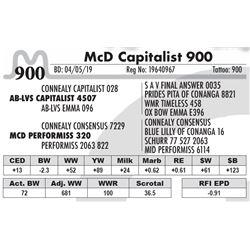 McD Capitalist 900