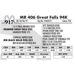 MR 406 Great Falls 94K