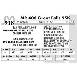 MR 406 Great Falls 95K