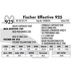 Fischer Effective 925