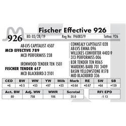 Fischer Effective 926