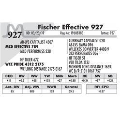 Fischer Effective 927