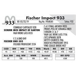 Fischer Impact 933