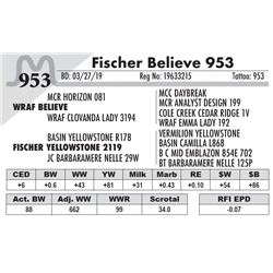 Fischer Believe 953