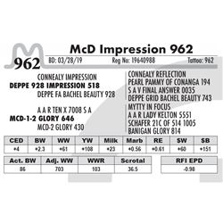 McD Impression 962