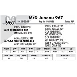 McD Juneau 967