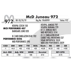 McD Juneau 972