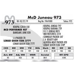 McD Juneau 973