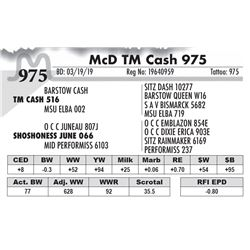 McD TM Cash 975