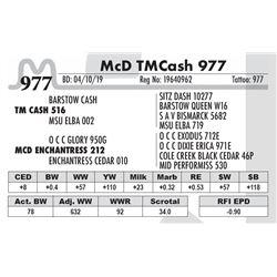McD TM Cash 977