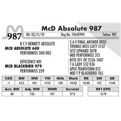 McD Absolute 987