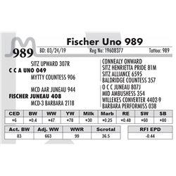 Fischer Uno 989
