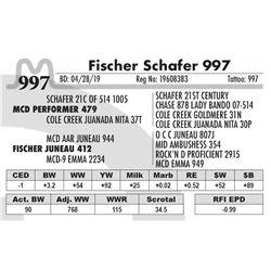 Fischer Schafer 997