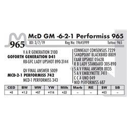 McD GM -6-2-1 Performiss 965
