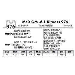 McD GM -6-1 Ritoess 976