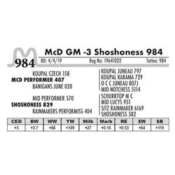 McD GM -3 Shoshoness 984