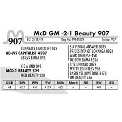 McD GM -2-1 Beauty 907