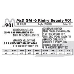 McD GM -6 Kintry Beauty 901