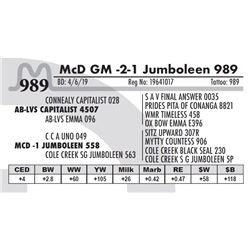 McD GM -2-1 Jumboleen 989