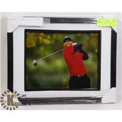 FRAMED TIGER WOODS PHOTO.