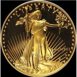 1991-W $50 GOLD AMERICAN GOLD EAGLE