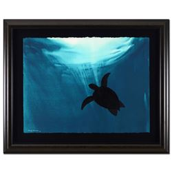 Original Turtles by Wyland Original