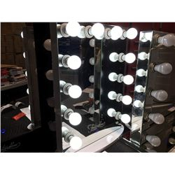 FONTAINEBLEAU 12 LED LIGHT VANITY MAKEUP MIRROR - 19.75  X 27.75  - B