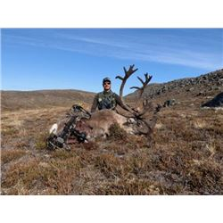 Canadian Central Barren Ground Caribou for 1 in 2020 or 2021 with Canadian Wilderness Outfitters