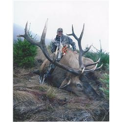 Oregon Roosevelt Elk Hunt for 1 with Eden Ridge Outfitting