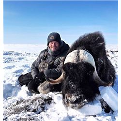 6 Day NW Territories Musk Ox Hunt for 1 with Canadian High Arctic Adventures