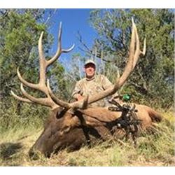 5 Day New Mexico Elk Hunt with Sebring's Highlonesome Outfitters
