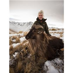 7 Day New Zealand Free-Range Tahr & Chamois Hunt for 2 in 2020 or 2021 with Metanoia Ventures, Ltd.