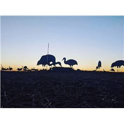 2 Day Oklahoma Sandhill Crane Hunt for 2 with RedCrest Outfitters in Nov. 2020