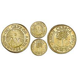 Guatemala (Central American Republic), gold 1/2 escudo, 1825M, NGC MS 63.