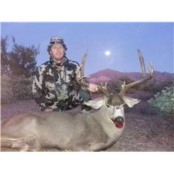 Mule Deer Hunt in Sonora Mexico For One Hunter 2021