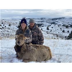 3 day WY Cow Elk hunt for 2 in WYO