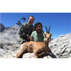 4 Day Pyrenean Chamois Hunt for 1 Hunter-2020