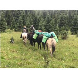 A  7 Day Moose or Mtn Goat hunt with Wicked River Outfitters for 2021