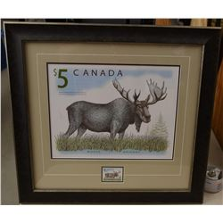 Majestic Moose Stamp and Silver Coin Set
