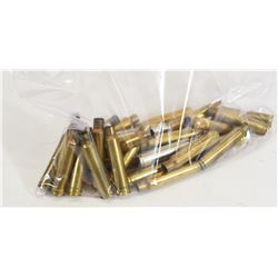 25 Pieces of 338Win Mag Brass